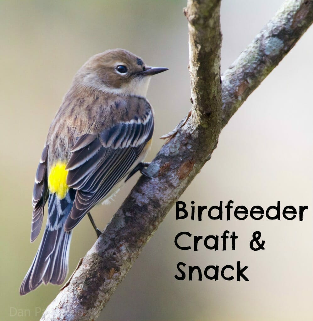 birdfeeder church craft