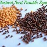 Mustard Seed Bite Snacks