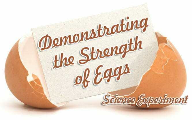 demonstrating-the-strength-of-eggs