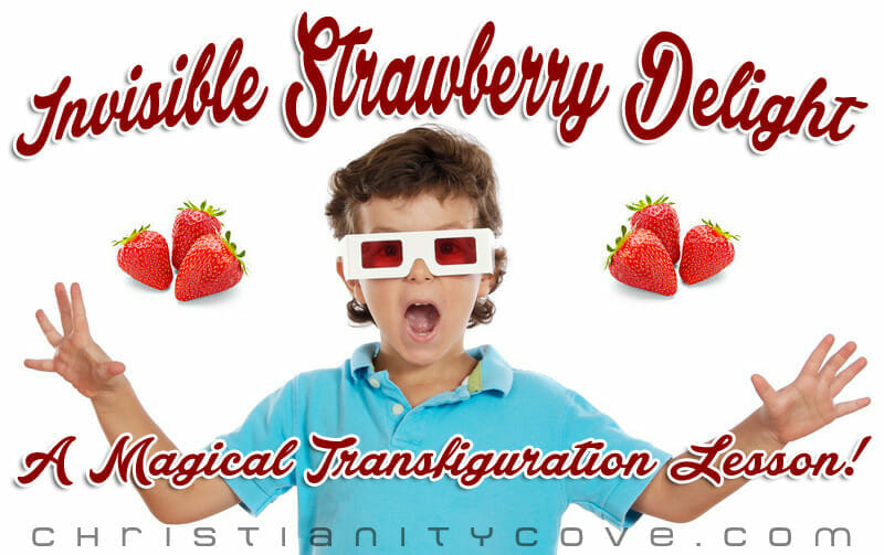 invisible strawberry delight transfiguration lesson