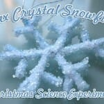 """Crystal Snowflakes"" Christmas Science Experiment"