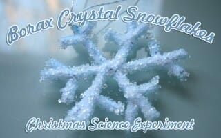 """Crystal Snowflakes"" Science Experiment"