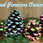 dipped-pine-cone-ornaments christmas craft