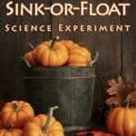 Pumpkin Sink-or-Float: A Pumpkin Science Experiment