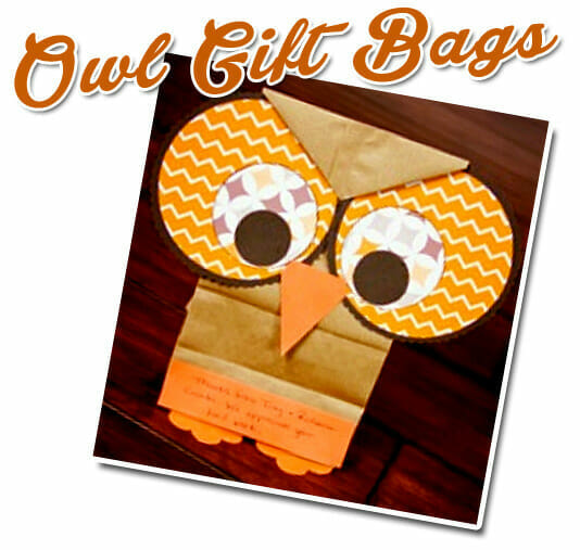 """Wise As Owls"" Owl Gift Bags"