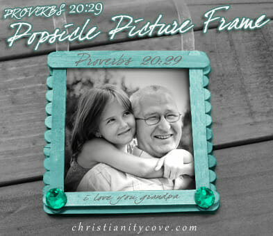 proverbs 20 popsicle picture frame