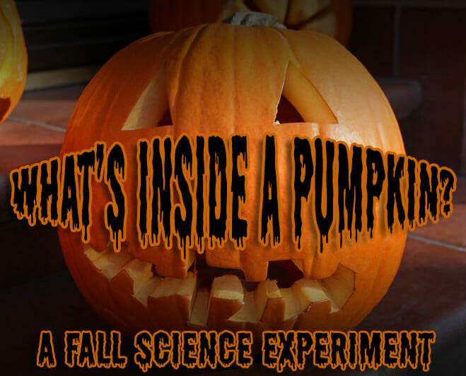 Fall Science Experiment: What's Inside a Pumpkin?