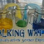 """Walking Water"" and Waiting for Spring (A Bible Science Experiment)"