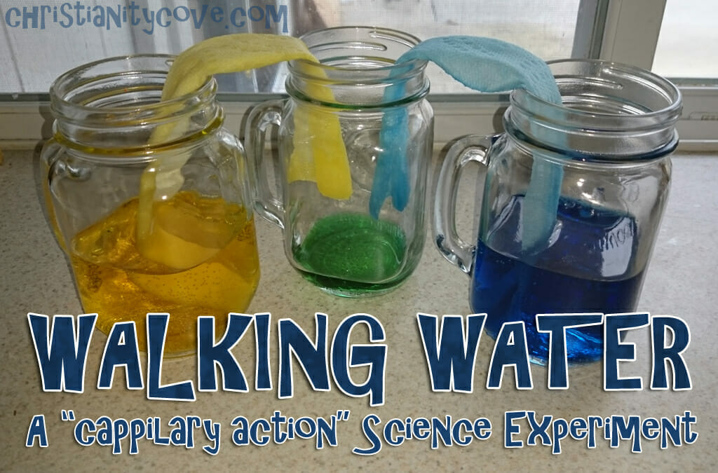 "Walking Water"" - A Spring Bible Science Experiment"