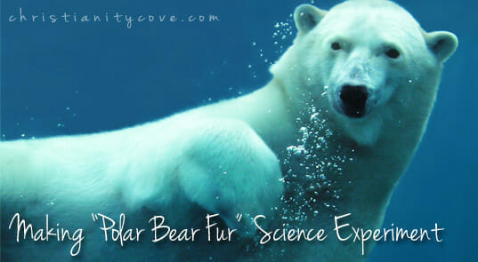 "Earth Day Science Experiment: Making ""Polar-Bear Fur"""