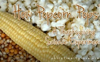 How Popcorn Pops!  A Thanksgiving Science Experiment