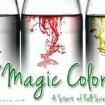 """Magic Color"" – A Start of Fall Science Experiment"