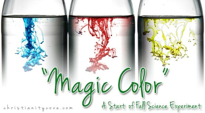 magic-color-fall-science-experiment-3