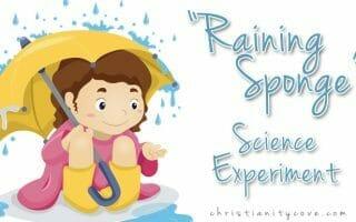 """Raining Sponge"" Harvest Science Experiment"