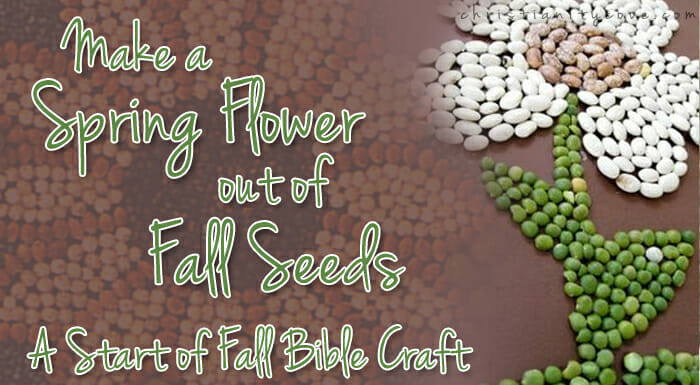 Make a Spring Flower out of Fall Seeds (Bible Craft)
