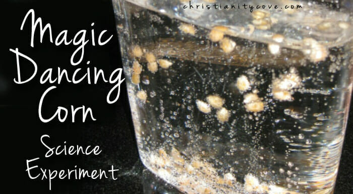 Magic Dancing Corn – A Bible Science Experiment