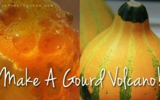 gourd-volcano-science-experiment
