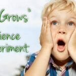 """""""Love Grows"""" Science Experiment"""